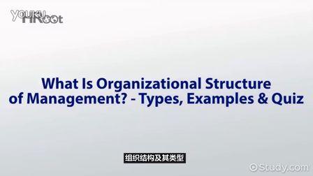 组织结构及其类型