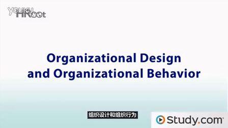 组织设计和组织行为